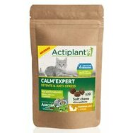 Calm Expert Chaton Chat Actiplant